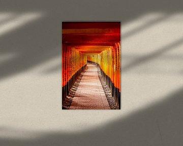 Orange Torii-Tore in Kyoto von Mickéle Godderis