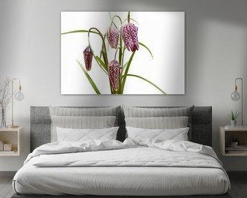 Kiebitz-Bouquet von Ellinor Creation