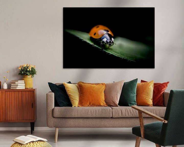 Sfeerimpressie: Lieveheersbeestje van Jan van der Knaap
