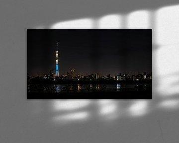 Tokyo Skytree van Salmon Creations