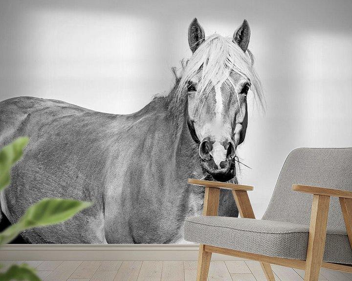 Beispiel fototapete: Haflinger schwarz weiß von Kim Reuvekamp