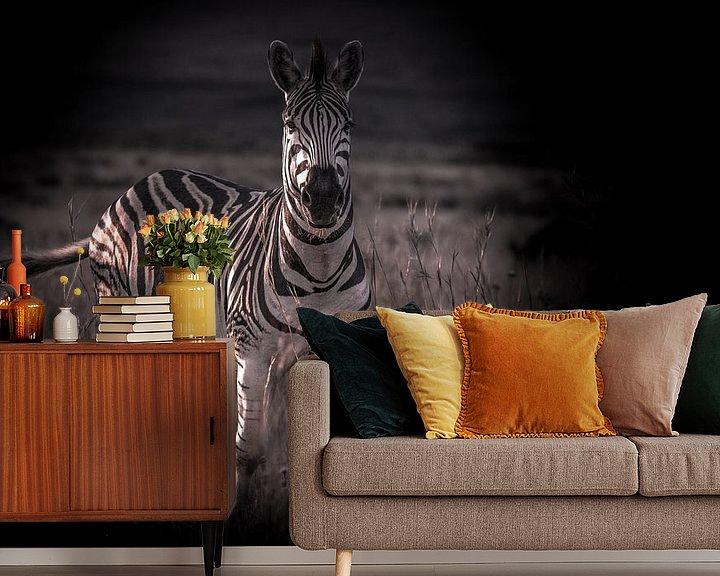 Beispiel fototapete: Zebra schaut in die Kamera. von Gunter Nuyts