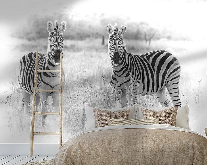 Beispiel fototapete: Zebras schauen in die Kamera. von Gunter Nuyts