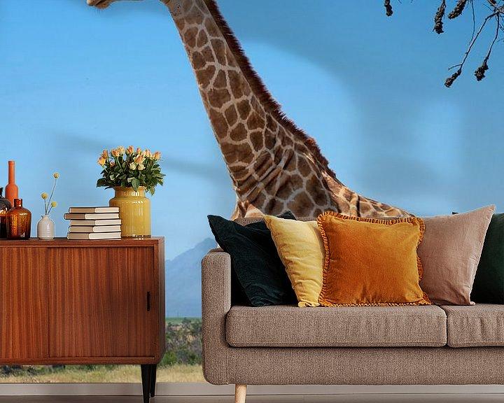 Beispiel fototapete: Giraffe von jacky weckx