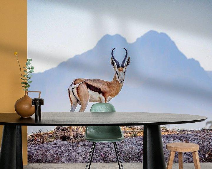 Beispiel fototapete: Impala von jacky weckx