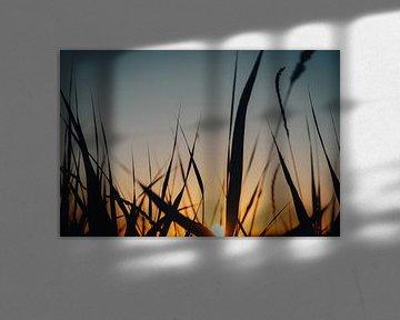 Zonsondergang van Maikel Schrama