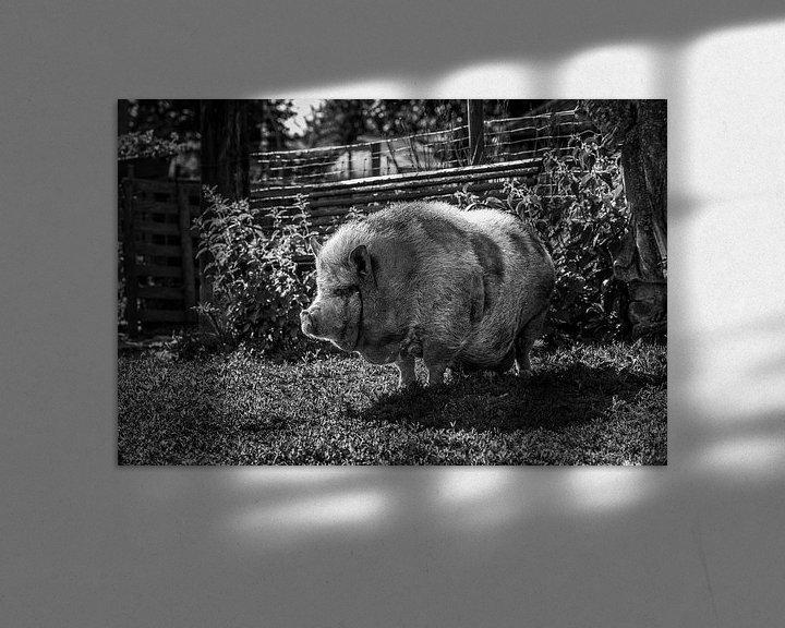 Beispiel: Hängendes Bauchschwein von Rob Boon