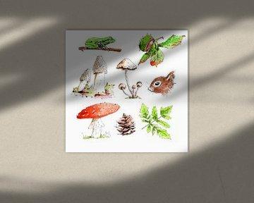 Illustration von Objekten im Wald
