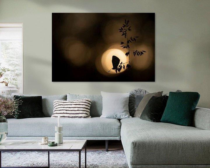 Sfeerimpressie: Icarusblauwtje in de zon van Erik Veldkamp