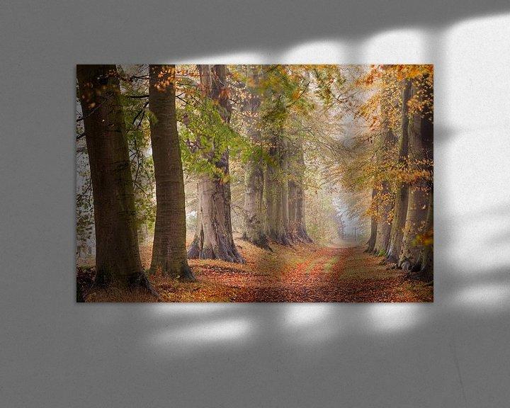 Impression: Avenue des hêtres, début de l'automne sur Frans Lemmens