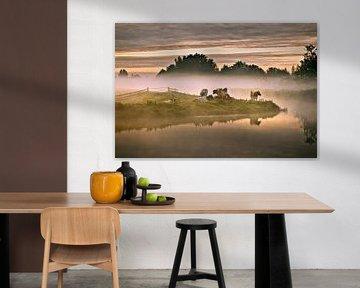 Pays-Bas, Tienhoven, Vaches dans le brouillard matinal à Molenpolder.