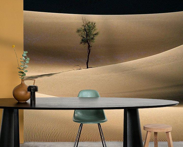 Beispiel fototapete: Einsamer Baum in der Wüste Sahara von Frans Lemmens