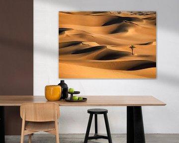 Einsame Palme in Sanddünen. Wüste Sahara.