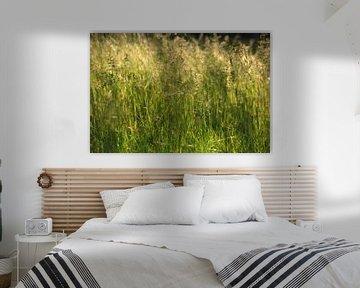 Grassen van Thomas Jäger