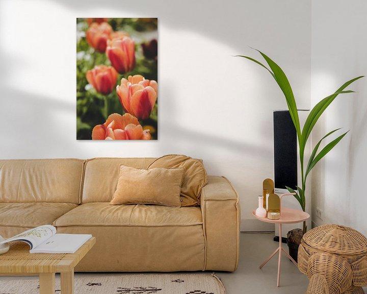 Sfeerimpressie: rode tulpen van Franziska Pfeiffer