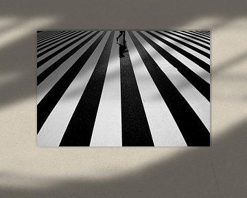 Schwarz und Weiß, Kouji Tomihisa von 1x