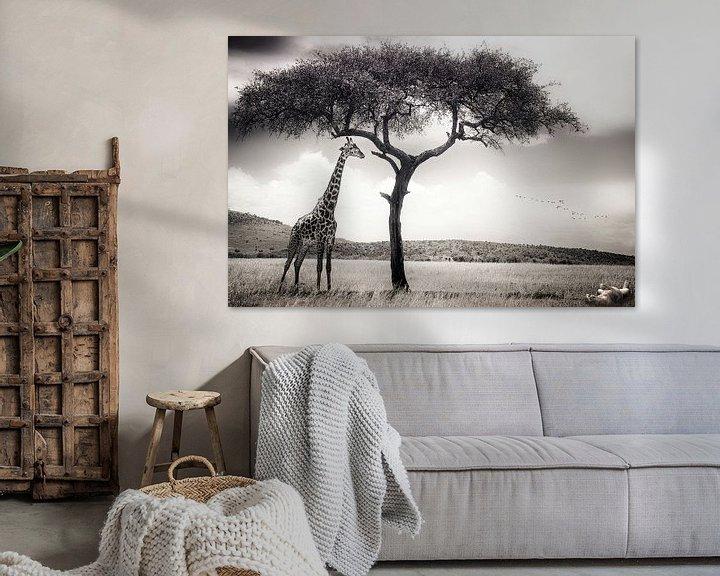 Beispiel: unter der afrikanischen Sonne, Piet Flour von 1x