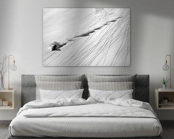 Ski en poudre, Lorenzo Rieg sur 1x