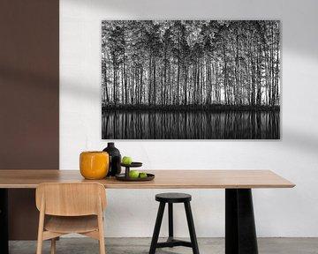 Pointillisme Nature, Roswitha Schleicher-Schwarz van 1x