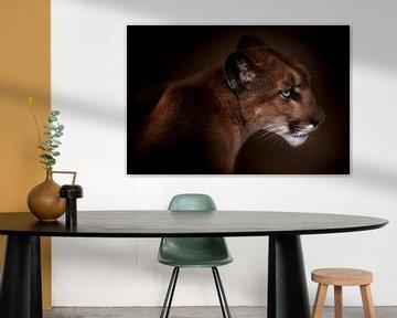 Puma, Doris Reindl von 1x