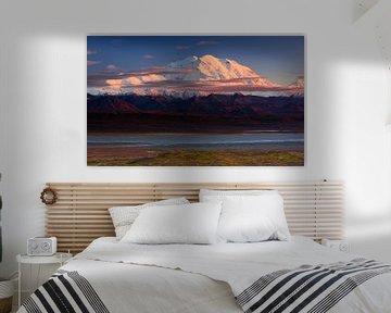 Denali National Park, Roberto Marchegiani van 1x