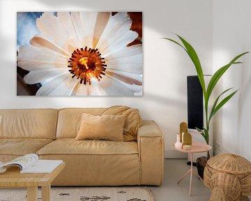 Blume Hintergrundbeleuchtung Makro-Infrarot von Lars Beekman