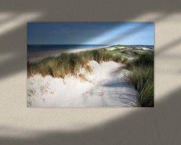Meeuwen boven de zeeduin in Egmond aan Zee van Fotografie Egmond
