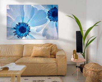 Blumen Makro-Infrarot von Lars Beekman