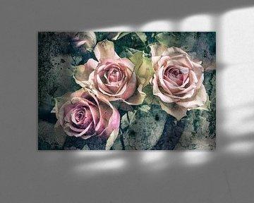 Pastell-Rosen von Eugene Winthagen