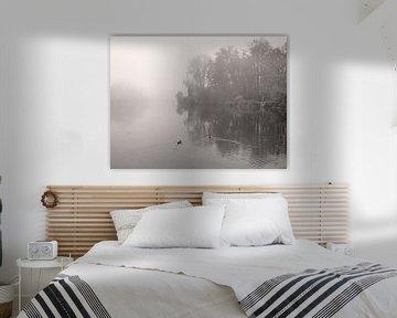 Rivier In Mist van Lena Weisbek