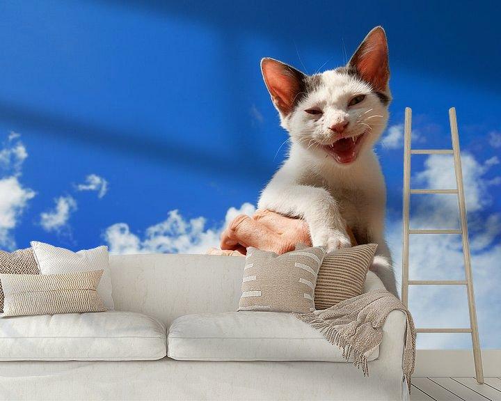 Beispiel fototapete: Griechisches lachendes Kätzchen von Ivonne Wierink