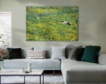 Storch fliegt über Butterblumen von Frans Lemmens
