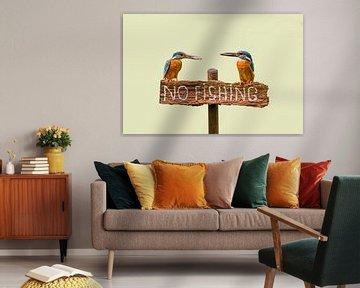 """Des martins-pêcheurs avec du poisson sur un panneau en disant """"no fishing"""""""
