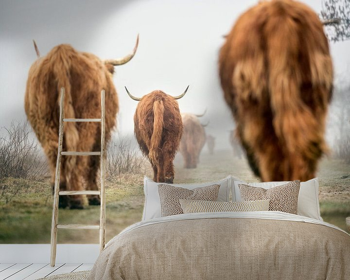 Sfeerimpressie behang: Schotse Hooglanders in ochtendmist van Frans Lemmens