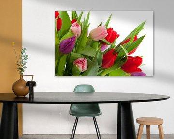 Tulpenstrauss auf weissem Hintergrund von Ivonne Wierink