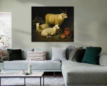 Aelbert Cuyp, schapen, 1600s