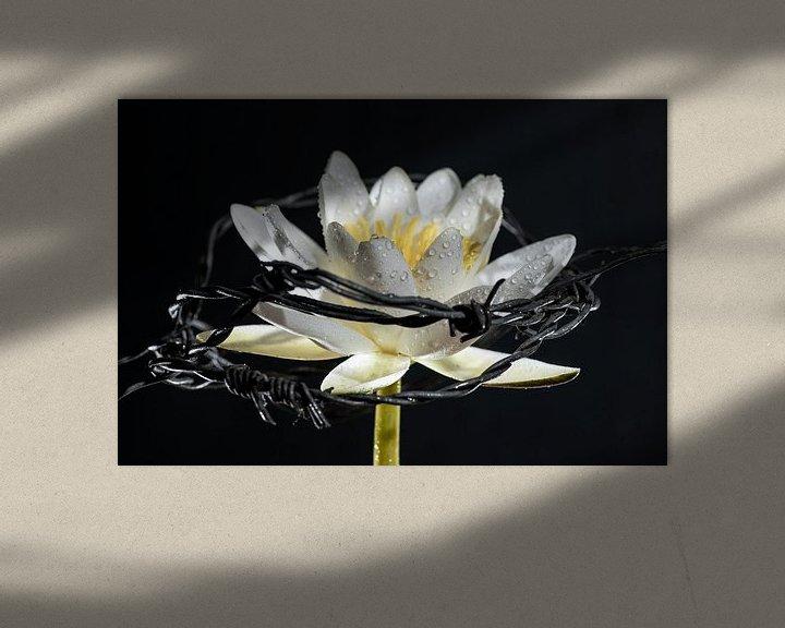 Sfeerimpressie: Van duisternis naar duisternis van Gerry van Roosmalen