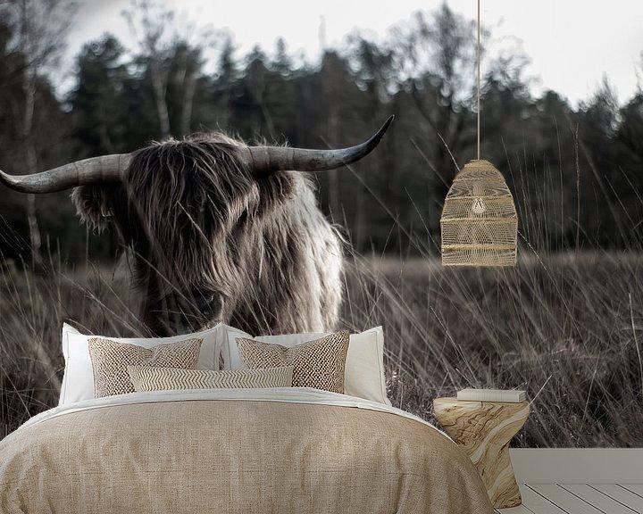 Sfeerimpressie behang: Schotse hooglander op de hei van Natasja Bittner