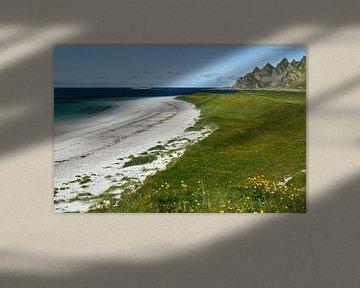 Karibischer Strand in Norwegen von Iris Heuer