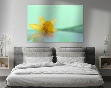 Een dromerig portret van een gele narcis drijvend op een stil wateroppervlak met een groene achtergr van Joeri Mostmans
