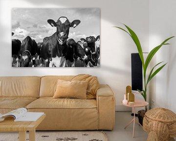 Schwarze-weiße Kühe auf der Wiese von Ad Jekel