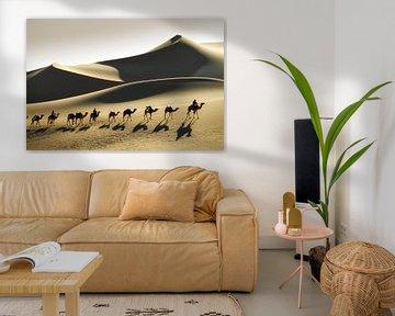 Désert du Sahara, caravane de chameaux et chameliers touaregs