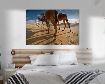 Wüste Sahara. Beduin mit Kamelen