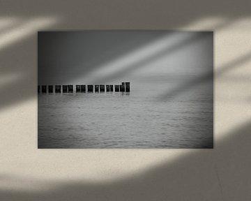 Stilleven aan zee van Frank Herrmann