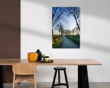 Pfad Winterbäume von Willian Goedhart