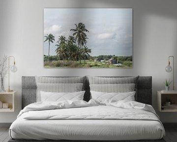 Palmbomen in een groen landschap aan de kust in West-Afrika | Benin van Photolovers reisfotografie