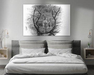 Eine besondere Komposition einer Löwin in Schwarz-Weiß. von Gunter Nuyts