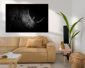 Kopf eines Breitmaulnashorns in schwarz-weiß. von Gunter Nuyts