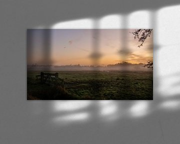 ochtendnevel van klaas zijlstra