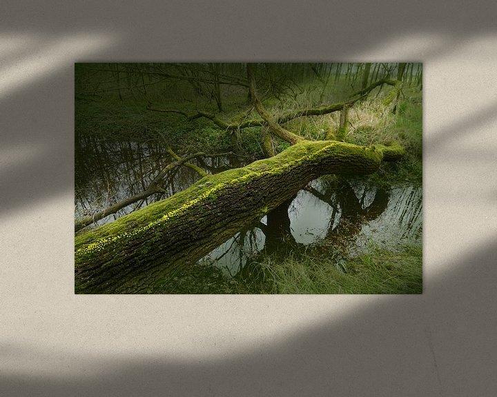 Sfeerimpressie: We steken over van Mies Heerma
